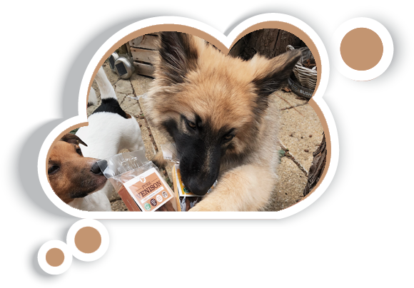 100% Natural Venison Dog Treats & Chews JR Pet Products